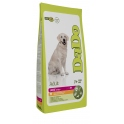 DADO Adult Large Pollastre